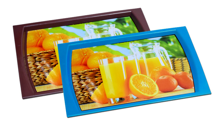 Daxer Plastic Serving Tray DST 03