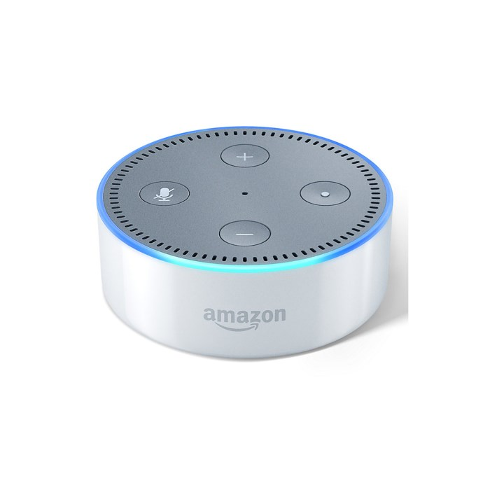 ECHO DOT -White